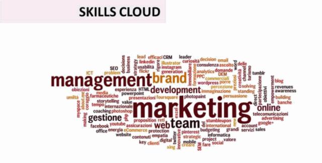 Skills cloud Ettore Iannella