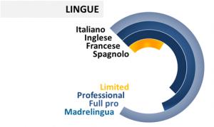 Curriculum vitae consocenza lingue straniere Ettore Iannella