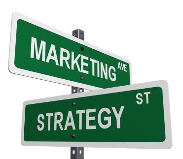 Direttore Marketing Strategico Web based