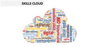 Skill Cloud Ettore Iannella